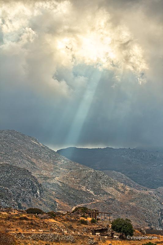 Polirenia, Kreta