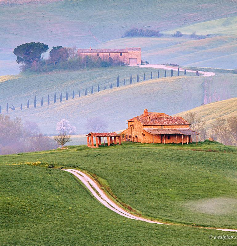 Wzgórza Toskanii wiosną