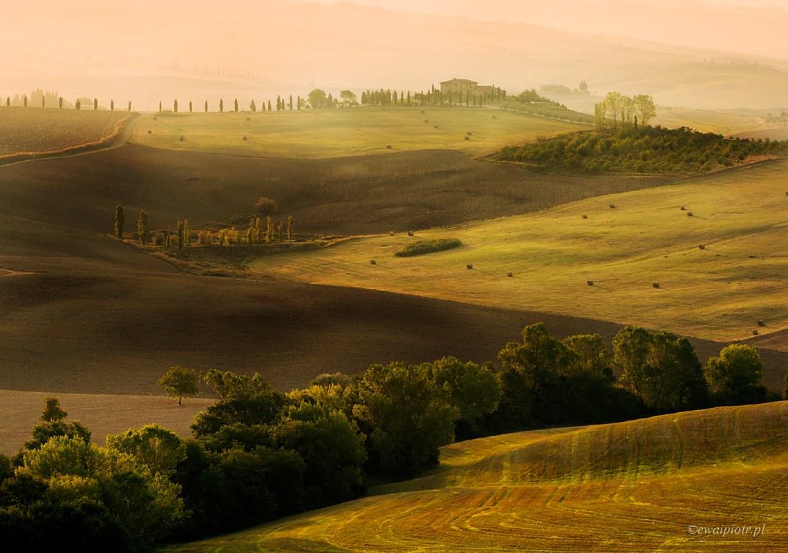 Toskańskie pola o świcie