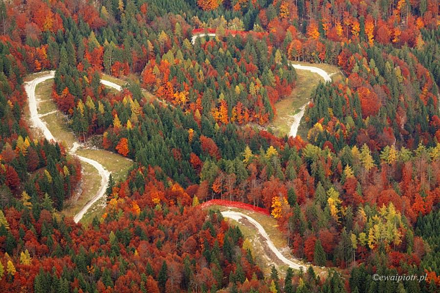jesień z Krippensteinu