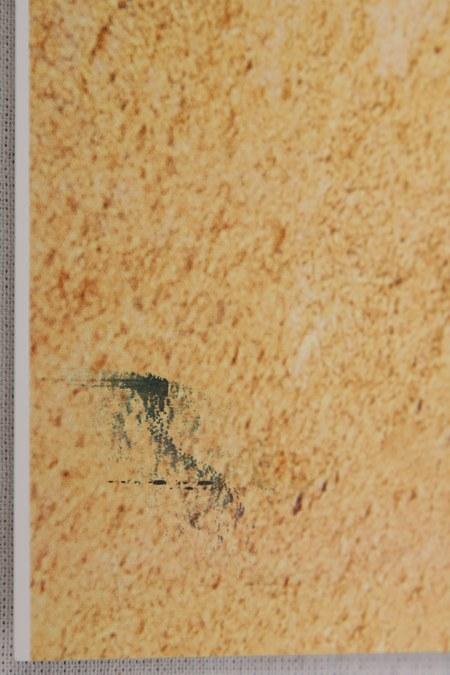 Drukarka Epson Stylus Pro 3880 - zabrudzenia pizza marks
