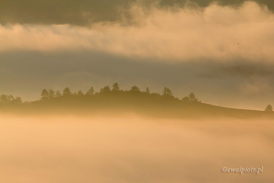 Mgły Maramureszu, Rumunia