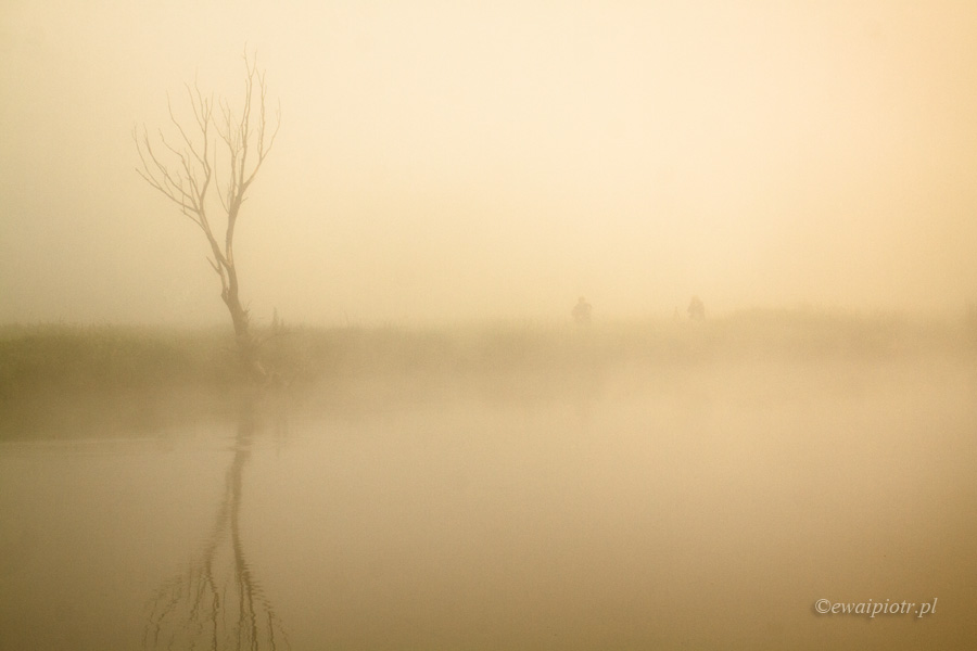 Mgły na Ponidziu