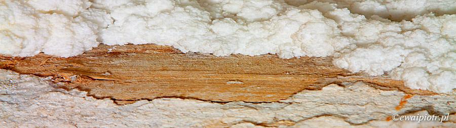 Wieliczka - sól