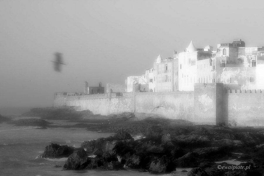 Essaouira magiczna