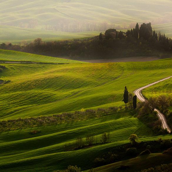 Toskania, pejzaż z drogą