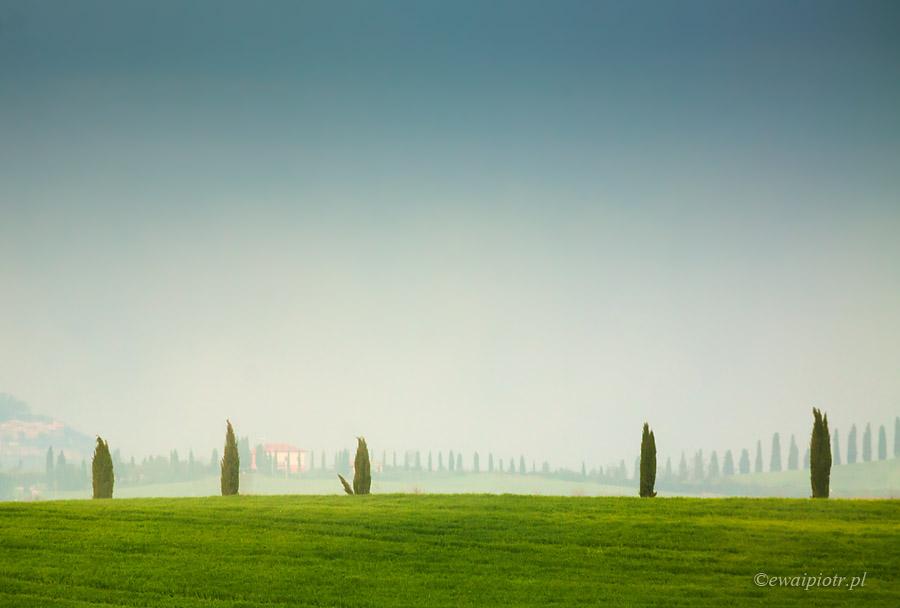 W Toskanii o świcie