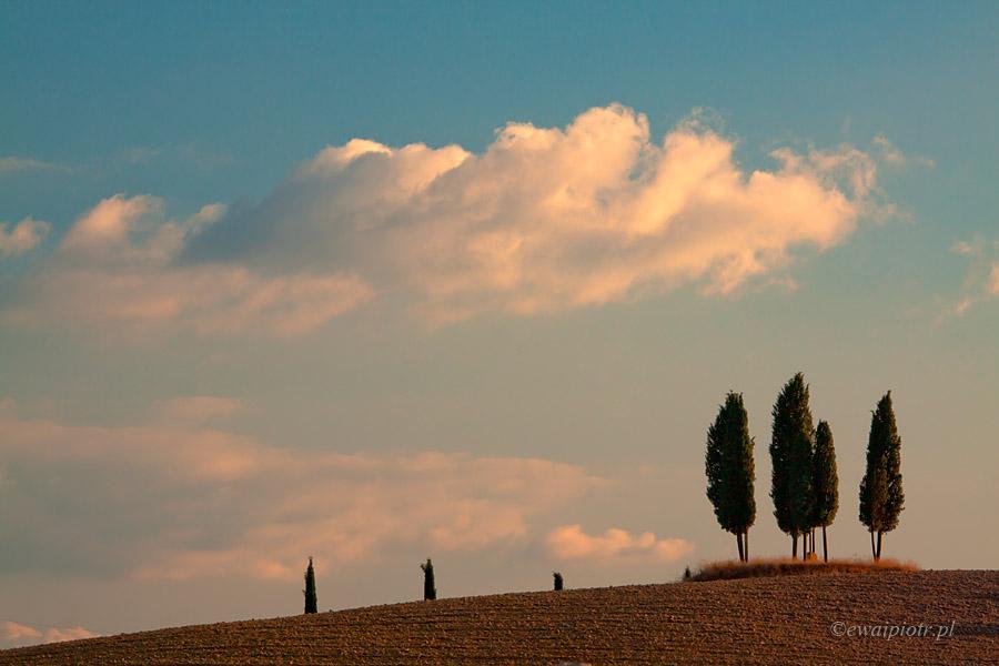 cyprysy o zachodzie, Toskania
