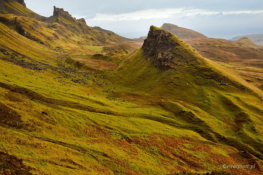 W górach Quiraing o poranku, Szkocja