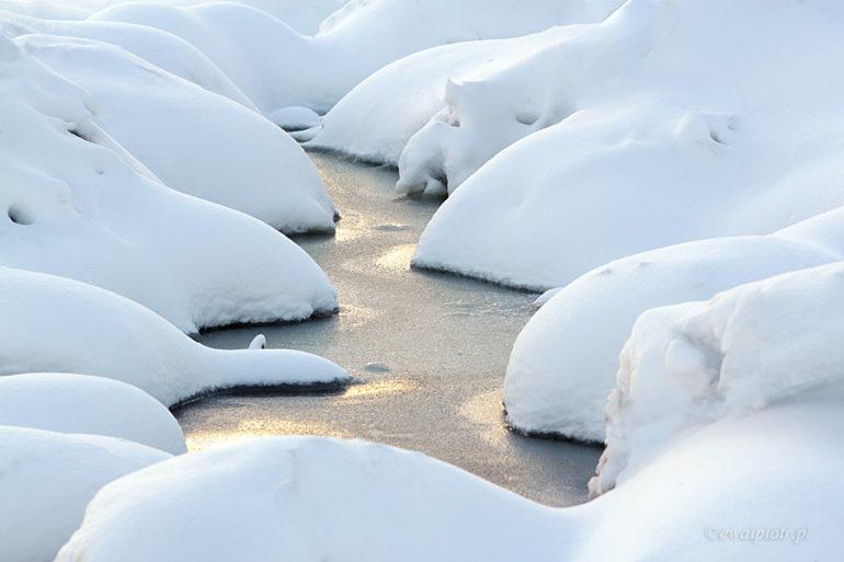 Śnieżna choinka