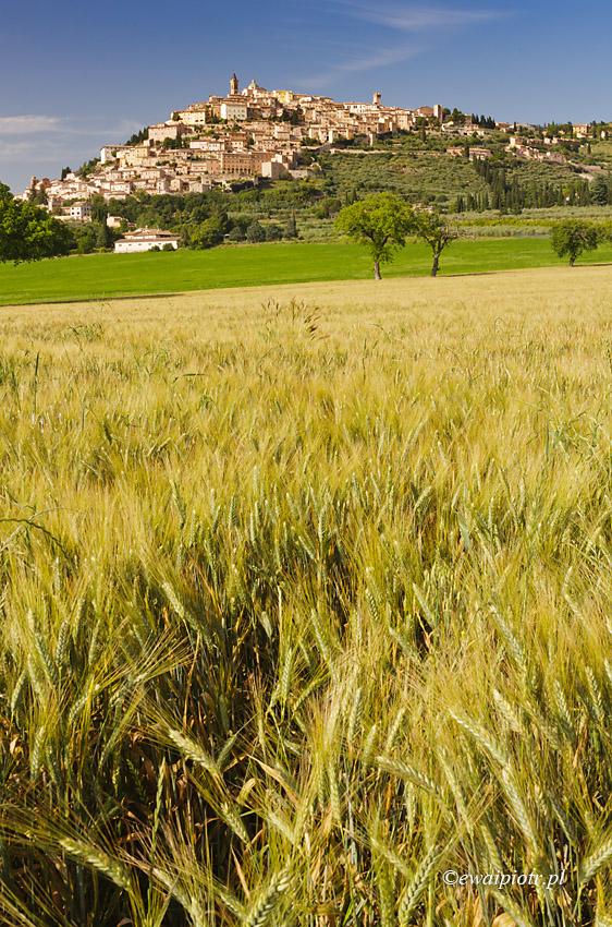 Widok na Trevi, Umbria