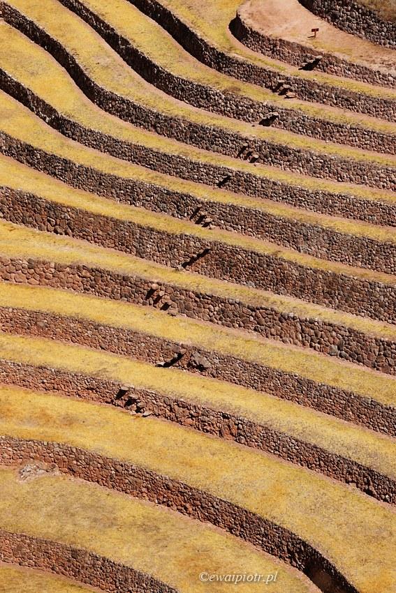Moray, czyli laoratorium na schodach. Peru
