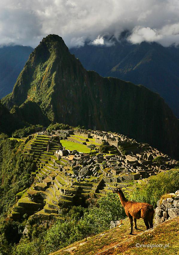 Oglądając Machu Picchu