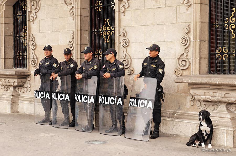 Pięciu opancerzonych i pies, Lima