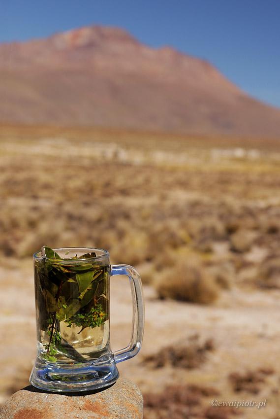 Herbatka z koki, Peru