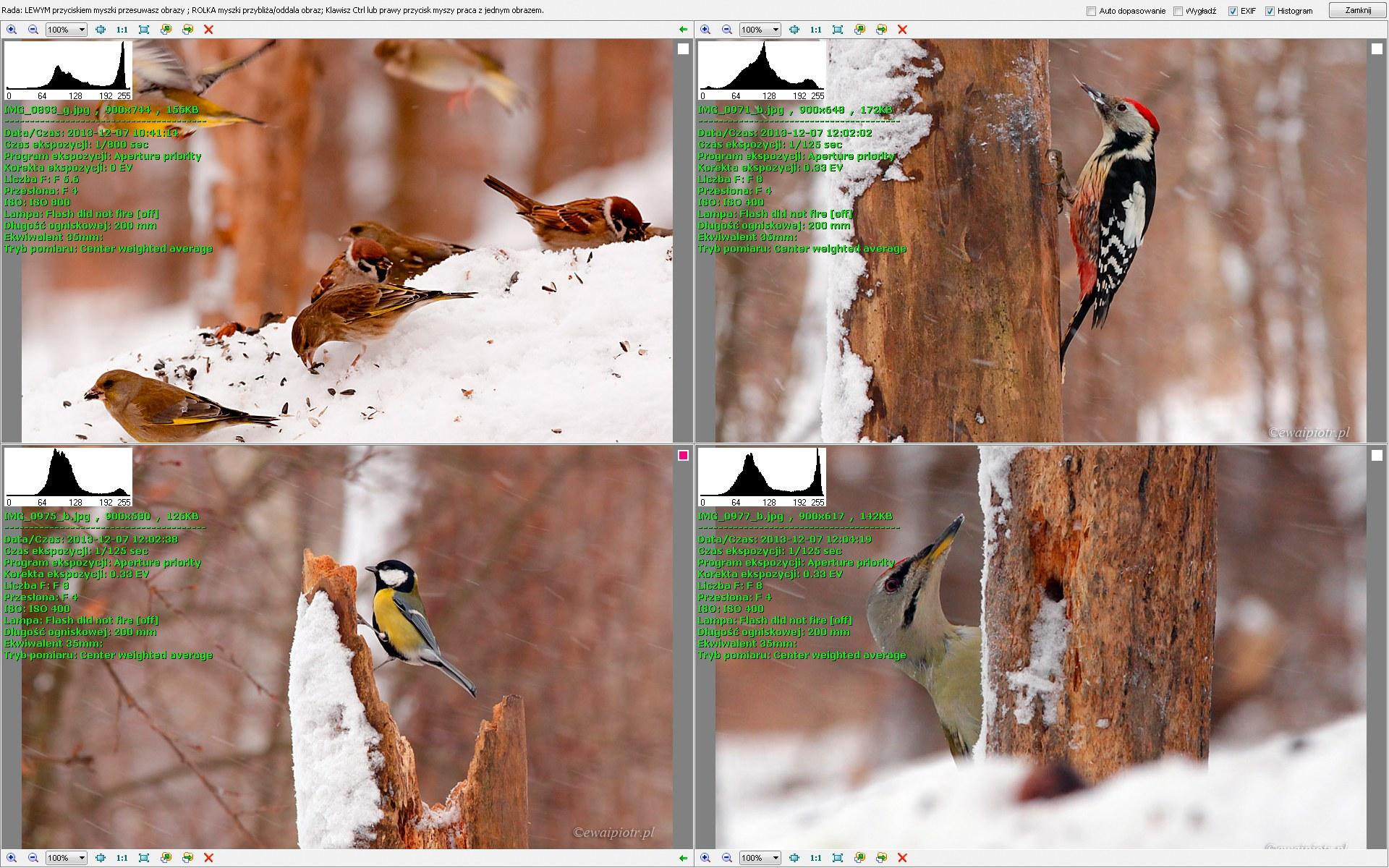 FastStone Image Viewer - porównywanie kilku zdjęć