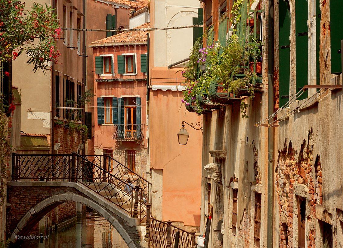 Wenecja i jej chaos