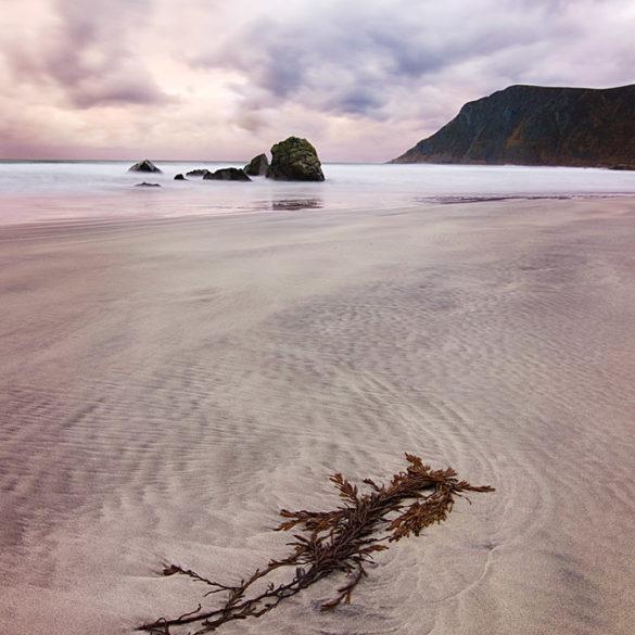 Plaże Lofotów