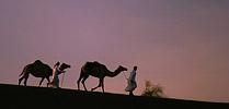 Oman – skarby Arabii – listopad 2017 Oman – skarby Arabii – listopad 2017