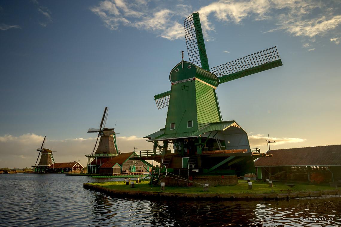 Świt w Zaanse Schans, Holandia