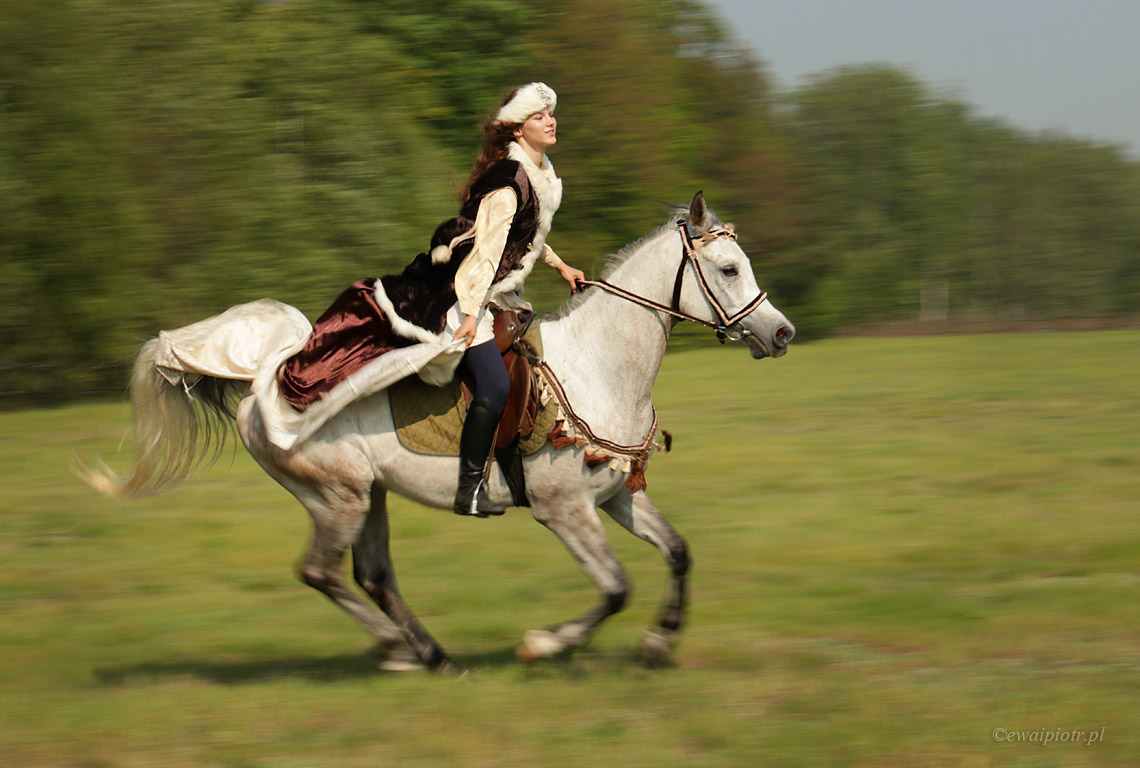 panoramowanie konia, Świętokrzyskie