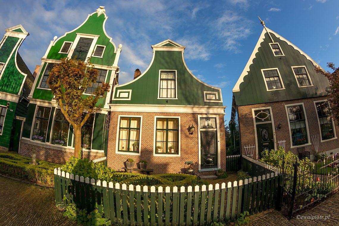 Zakręcona Holandia