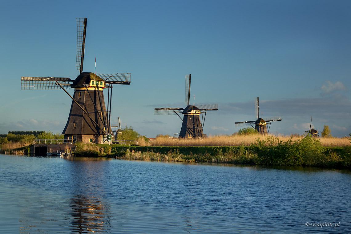 wiatraki Kinderdijk, Holandia