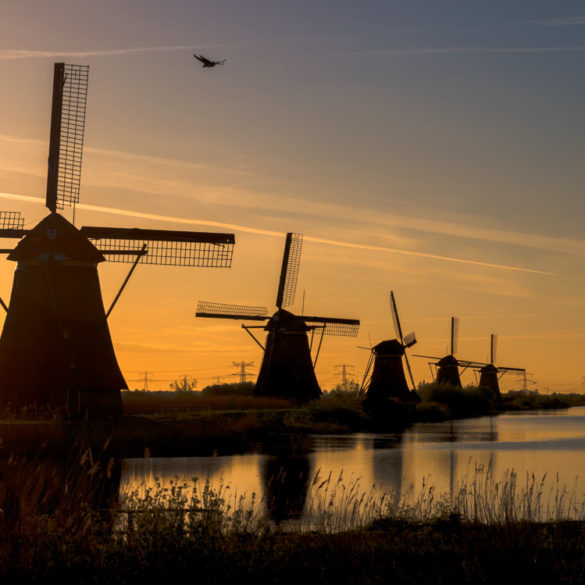 Kinderdijk o poranku, Holandia