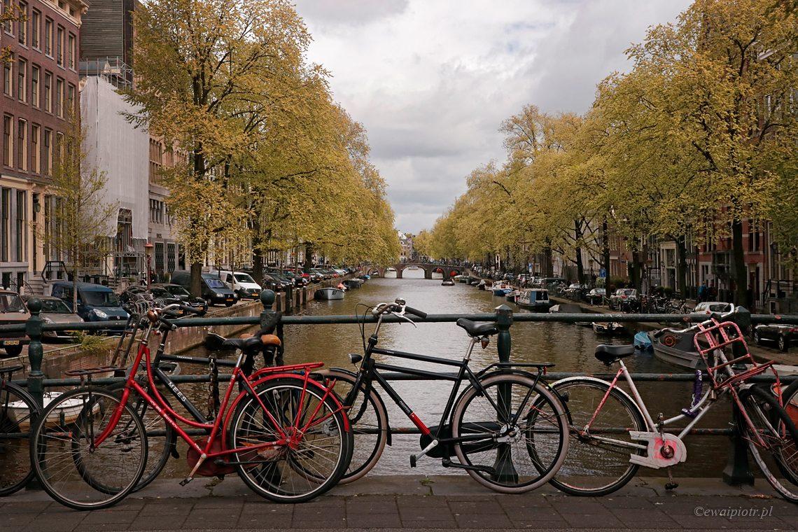 Widokówka z miasta rowerów, Holandia