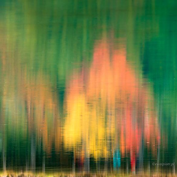 Plener fotograficzny - odbicie jesieni