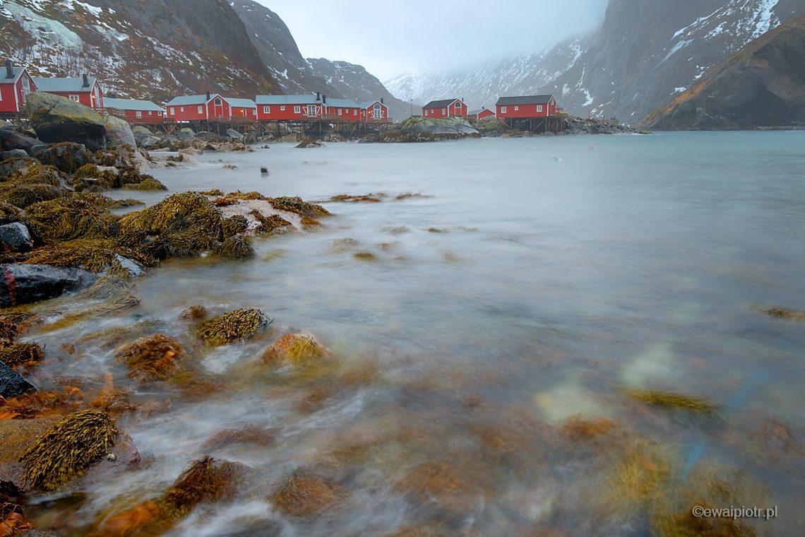 Czerwone domki i fjord, Lofoty, fotowyprawa