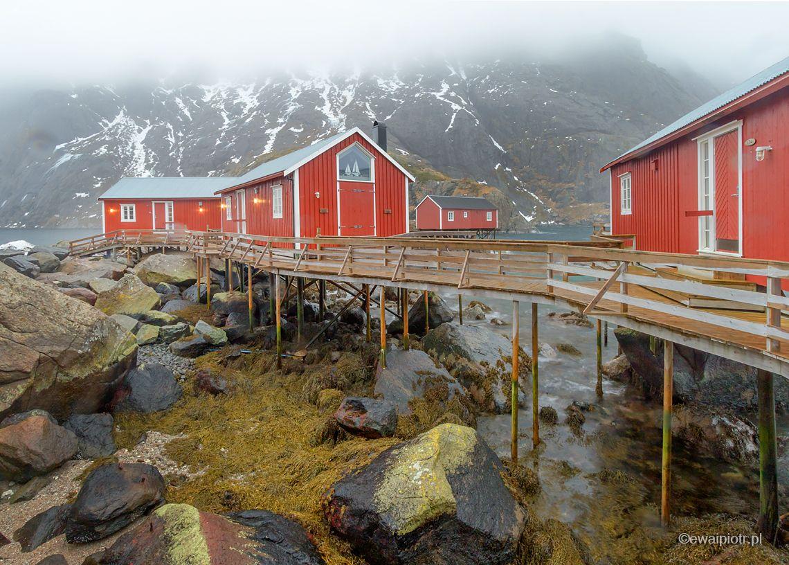Czerwone domki na Lofotach, rorbu, warsztaty fotograficzne