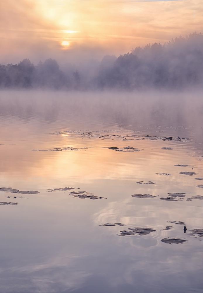 Wschód słońca, zalew, warsztaty fotograficzne Czarowne Świętokrzyskie