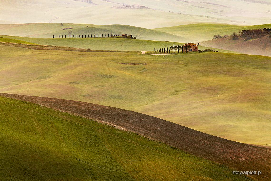 Zielone wzgórza, willa i cyprysy, Toskania fotowyprawa