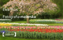 Fotografia malarska