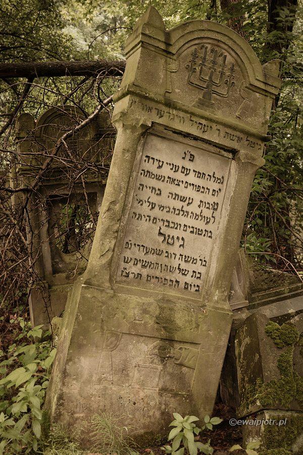 Kirkut w Szydłowcu, Czarowne Świętokrzyskie 2018, macewa, cmentarz żydowski,