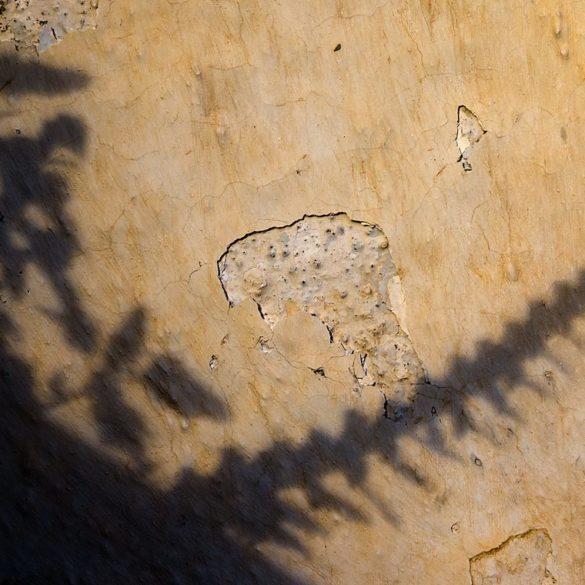 Cień, rośliny, mur, Santorini, jak fotografować cień