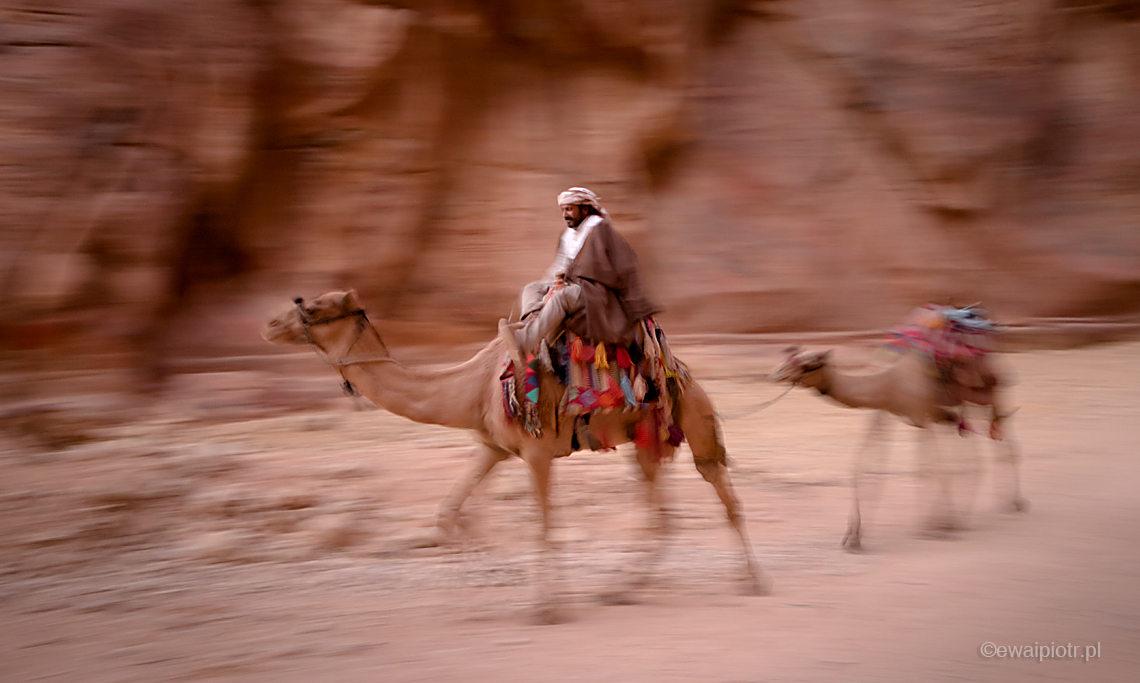 Pędzący wielbłąd, Siq, Petra, Jordania, panoramowanie