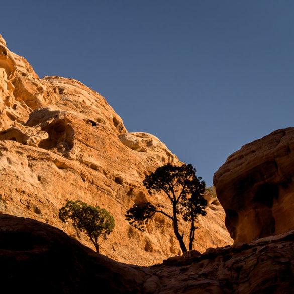 subskrypcja Adobe problem, Jordania, Petra