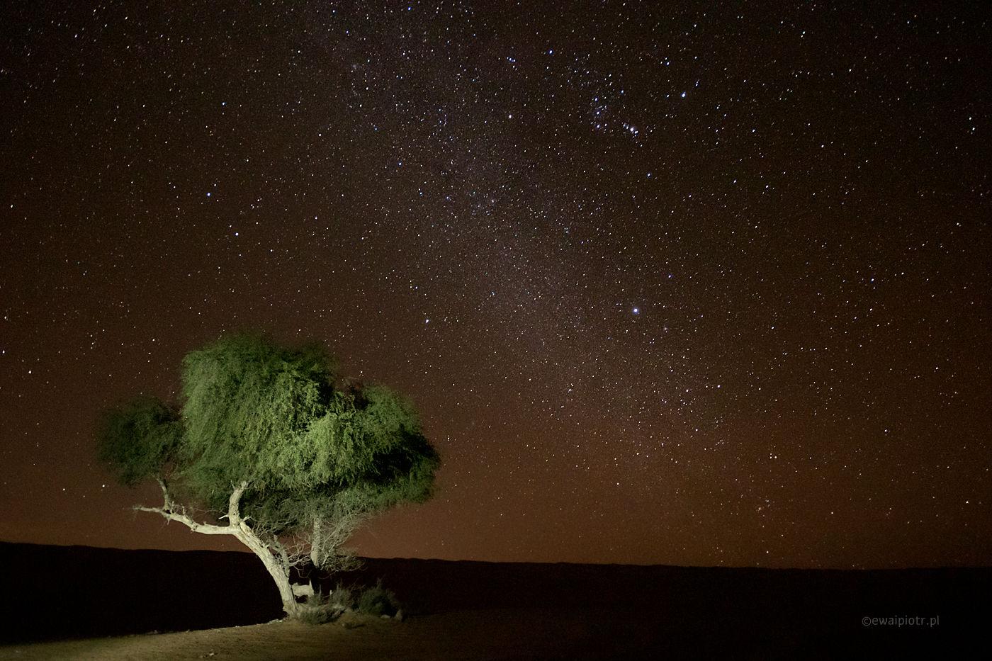 Gwiaździsta Noc w Omanie