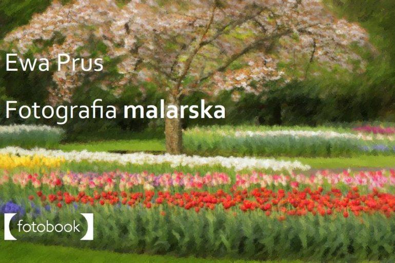 Fotografia malarska ebook
