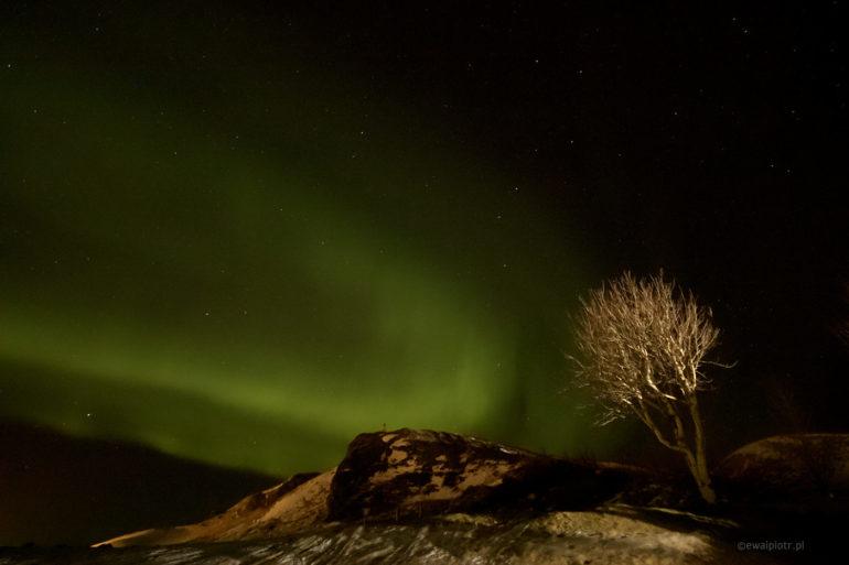 zorza, fotowyprawa Islandia