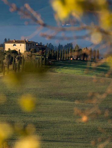Przez liście, Toskania