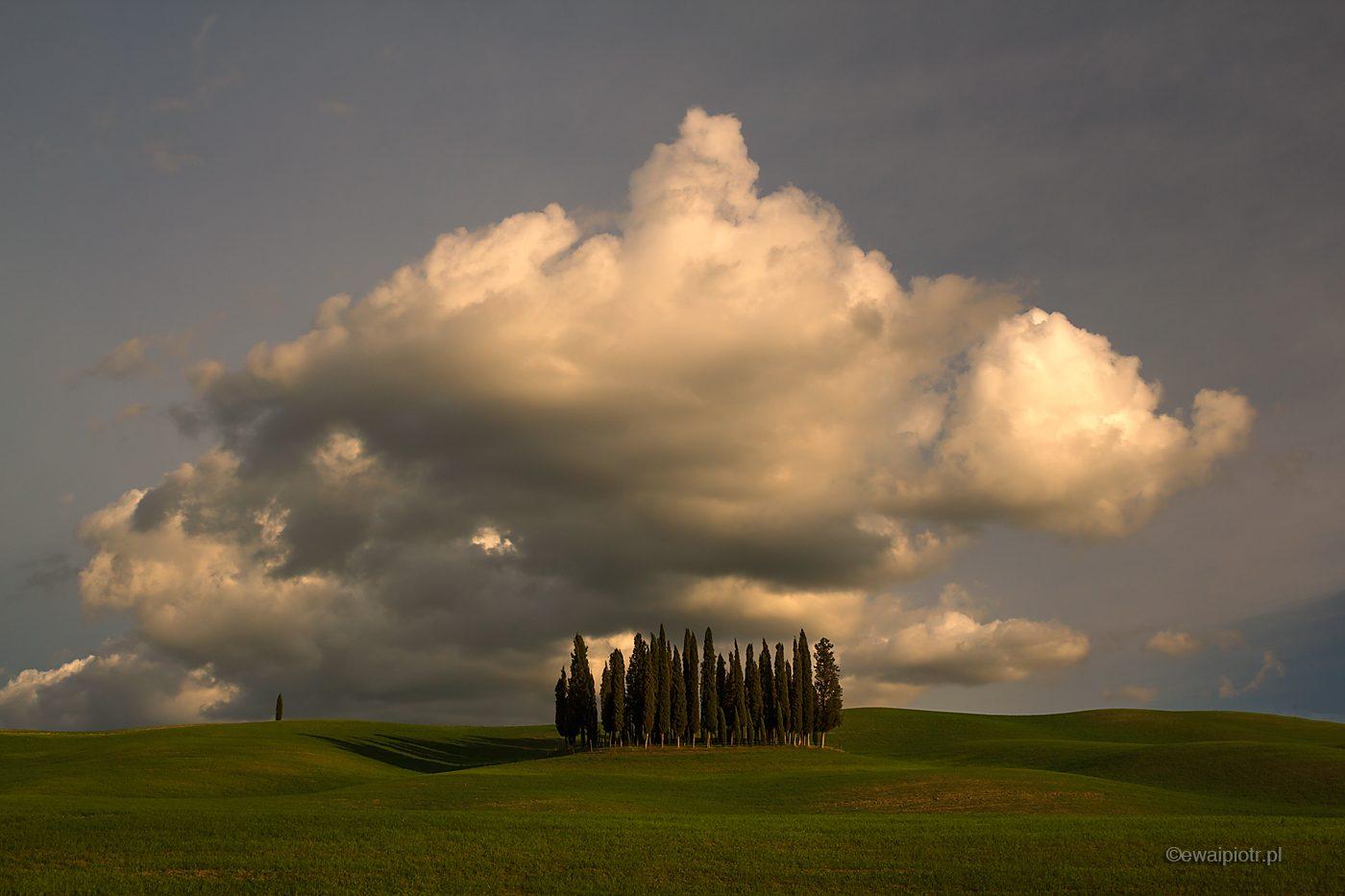 Cyprysy i chmura, Toskania