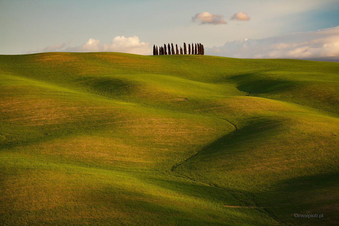 Zielone wzgórza Toskanii, fotowyprawa