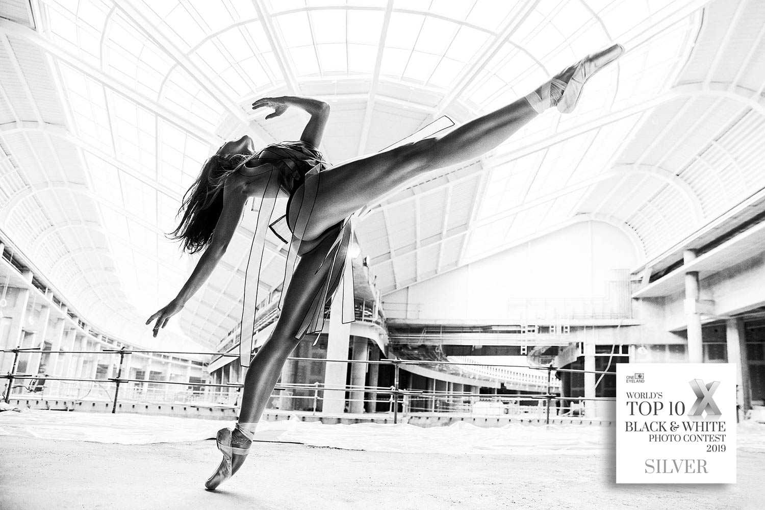 06_TOP10B&W_Brodziak_Ballerina