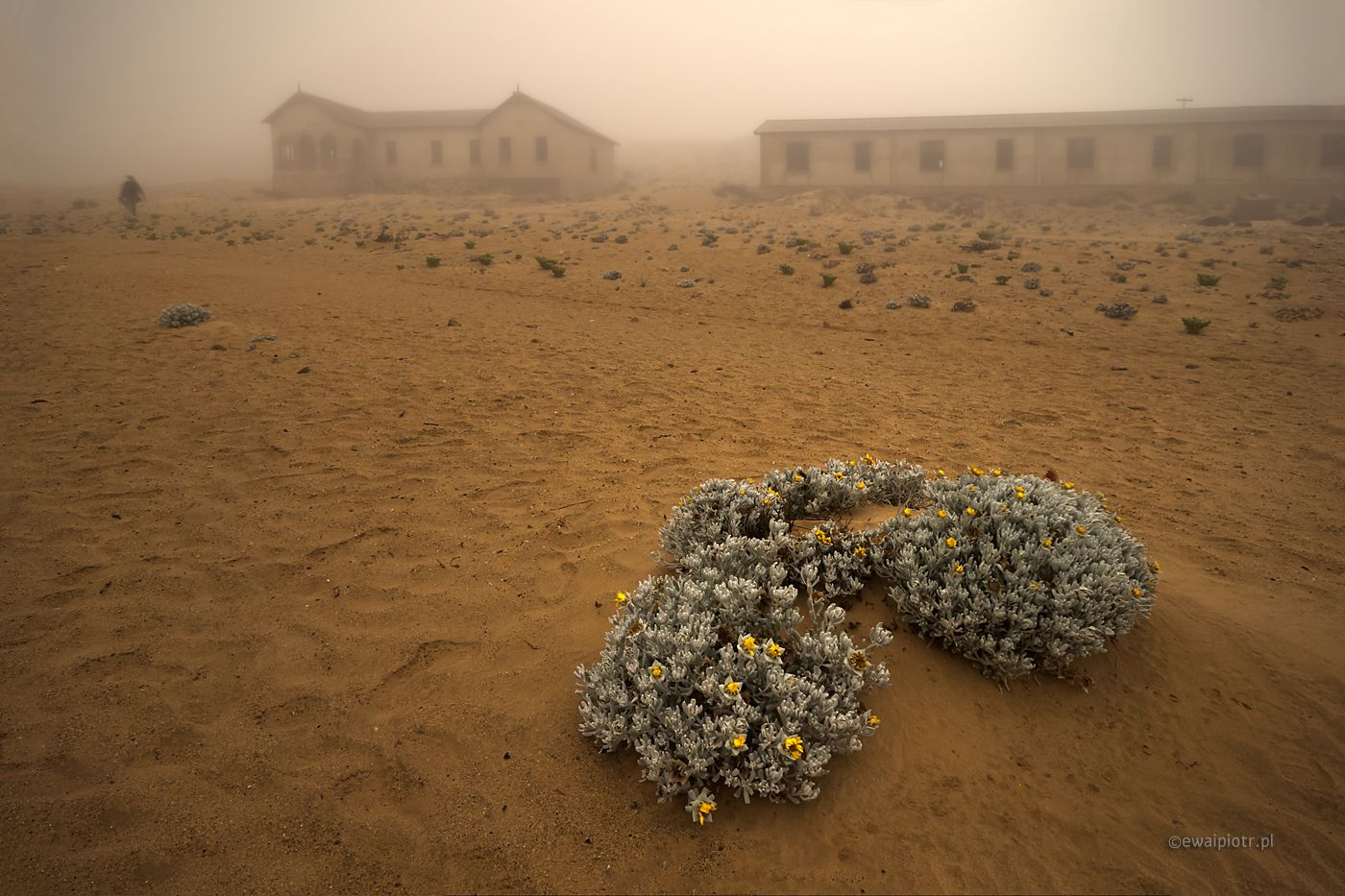 Miasto Duchów. Kolmanskop, Namibia