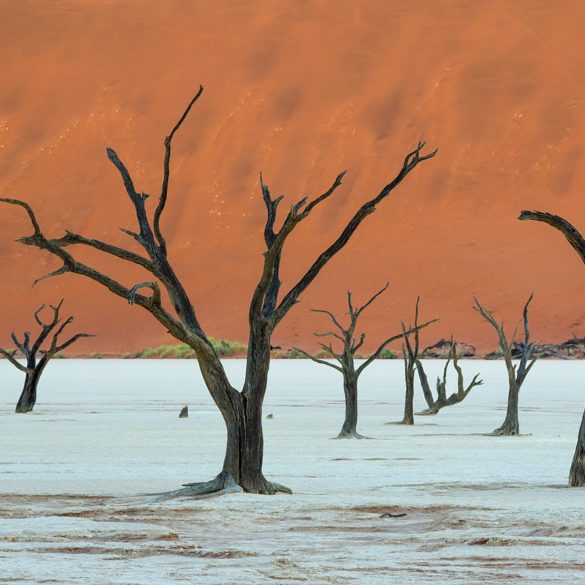 Deadvlei: czekając na światło, Namibia