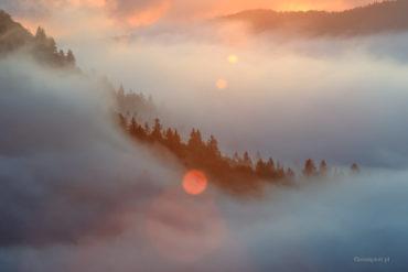 Mgła i flara, Słowenia