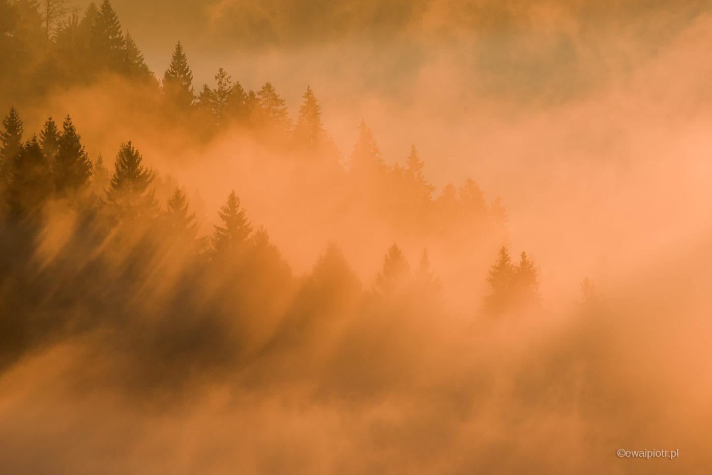Mgła i cienie, Słowenia, fotowyprawa